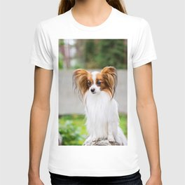 Portrait of a papillon dog T-shirt