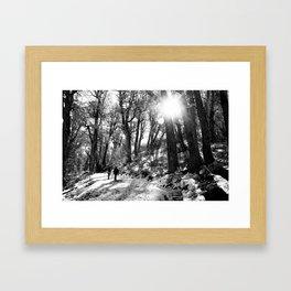 Transitando el bosque Framed Art Print