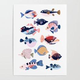 Tropical Fiji Fish Poster