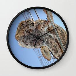 Chameleon Understudy Wall Clock