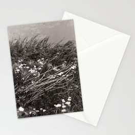 river bank, june 2018 Stationery Cards