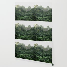 Tropical Foggy Forest Wallpaper