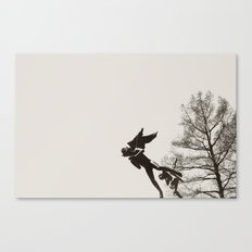 Almost flying Canvas Print