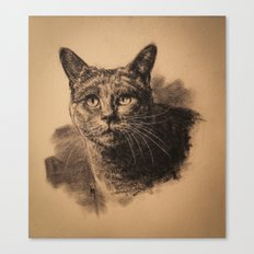 Nimbus Canvas Print