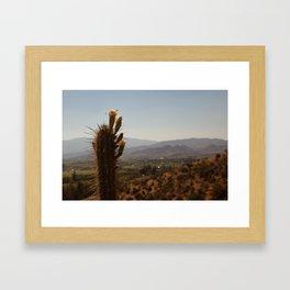 Los Cactus Framed Art Print