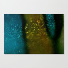 Light Drips III Canvas Print