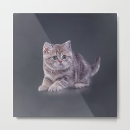 Drawing funny kitten Metal Print