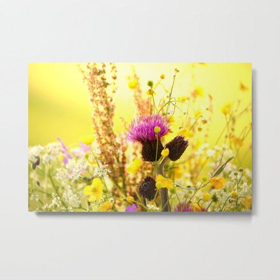Colorful Wildflowers Metal Print