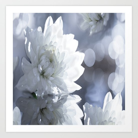 White flower with bokeh on a grey background included wonderful light Art Print