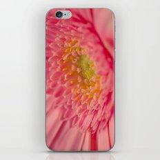 Pink Germini. iPhone & iPod Skin