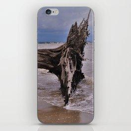 Drift Wood Beach 6 iPhone Skin