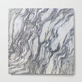 Wild Natural Marble Metal Print