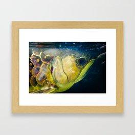 gold-plated Framed Art Print