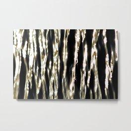 Zebra Water Metal Print
