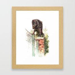 Boar Framed Art Print