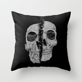 Anthropology Throw Pillow
