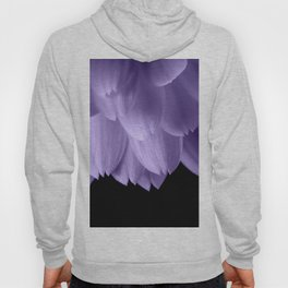 Ultra violet purple flower petals black Hoody