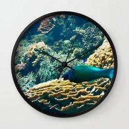 Coral Blue Wall Clock