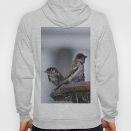 Bathing Sparrows Hoody