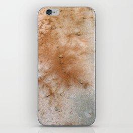 Red desert iPhone Skin