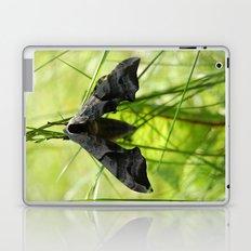 Swarms at night Laptop & iPad Skin