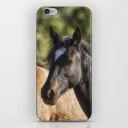 A Filly and a Colt from Garcia's band - Pryor Mustangs iPhone Skin