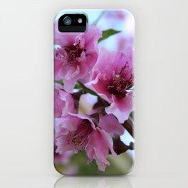 Peach Tree Blossom Close Up iPhone Case