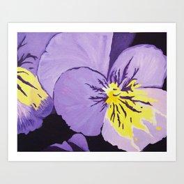 violet viola Art Print