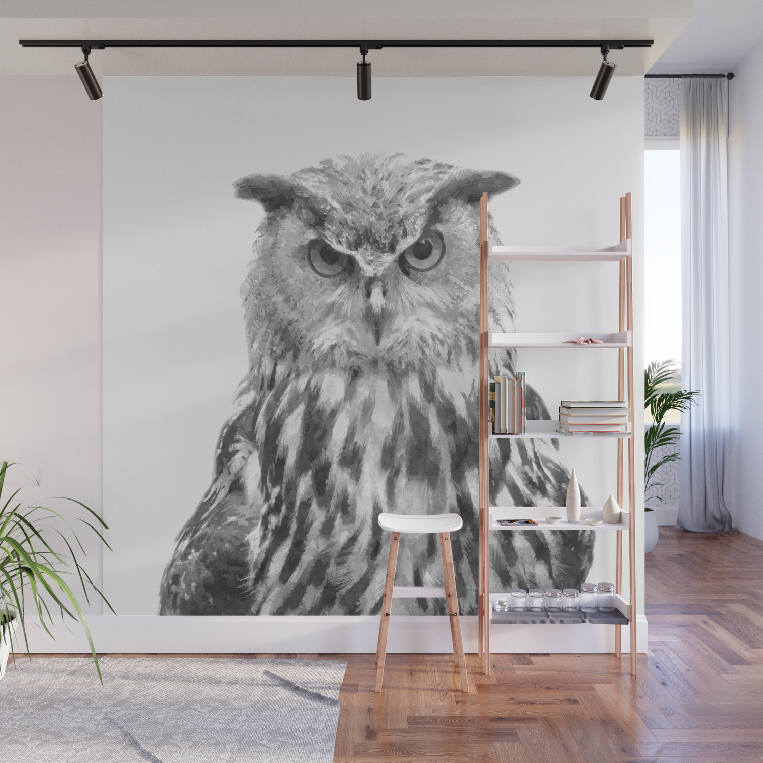 Black and white owl animal portrait wall mural