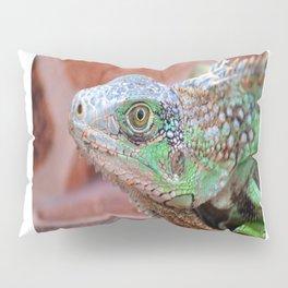 Green Iguana Pillow Sham