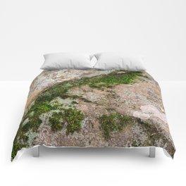 Yin Yang Moss Stone Comforters