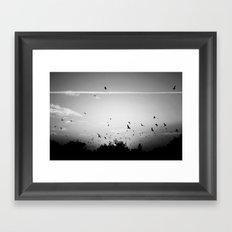 Migrating birds #02 Framed Art Print