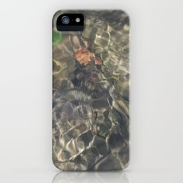 Natural Mosaic 2 iPhone Case