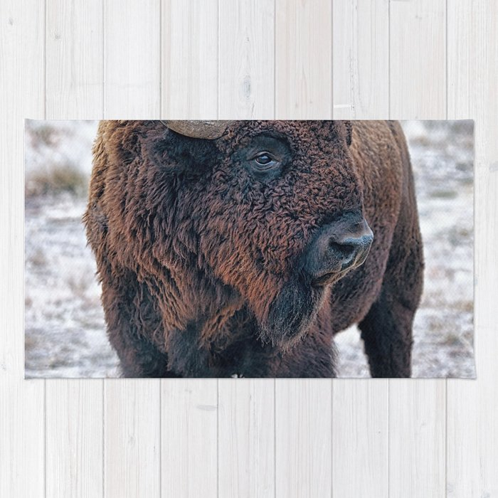 In The Presence Of Bison #society6 #decor #bison by Lena Owens @OLena Art Rug