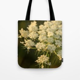Queen Anne's Lace Flower Tote Bag