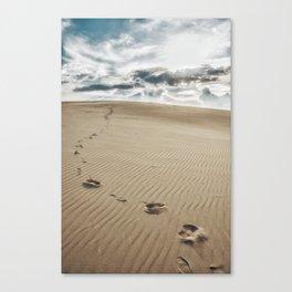 Nam Cuong sand Canvas Print