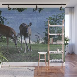 Grazing Deer Wall Mural