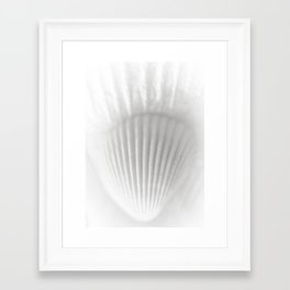 Shell&Shell Framed Art Print