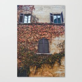 portals .:. room with a view Canvas Print