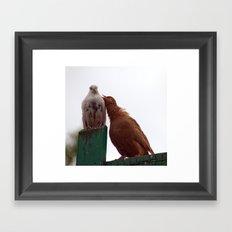 Love song 6529 Framed Art Print