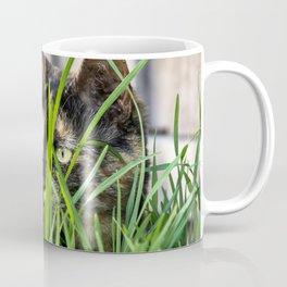 Cat in grass Coffee Mug