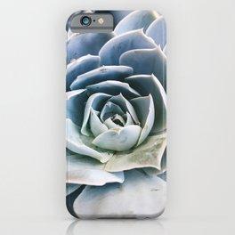 Laguna Beach Succulent iPhone Case