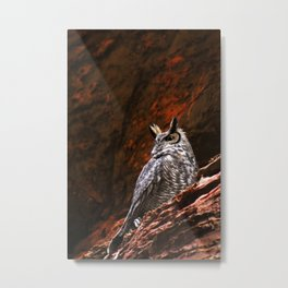 Great Horned Owl in the Rocks Metal Print