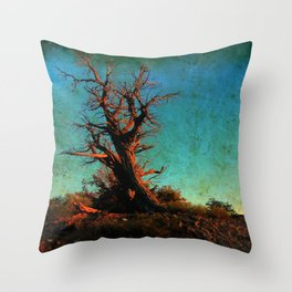 Sun on my face Throw Pillow