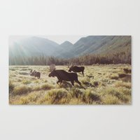 sunrise Canvas Prints featuring Three Meadow Moose by Kevin Russ