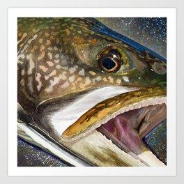 Lake Trout Head Painting Art Print