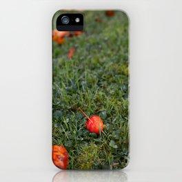 Autumn crab apple iPhone Case