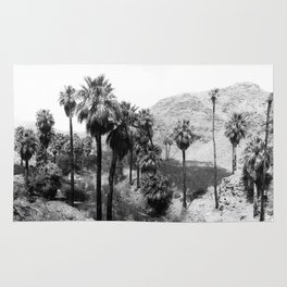 Palm Canyon near Palm Springs c.1901 Rug