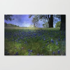 A field of Blue Canvas Print