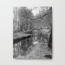 River Pathway Metal Print
